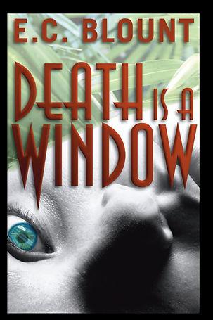 Book Cover: Murder Mystery Novel. Student Nurse Murders In Palm Beach.
