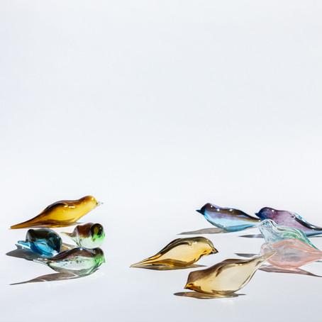 """Felekşan Onar'ın göçebe kuşları """"Perched"""" Dresden Devlet Müzesi'nde"""