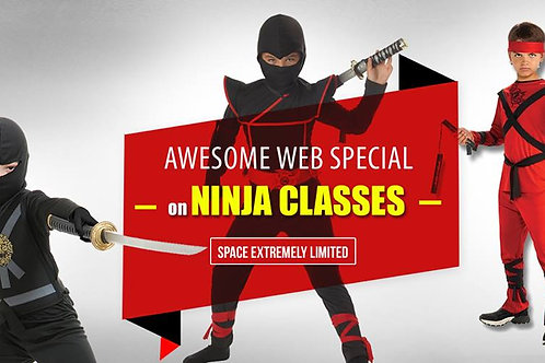 Ninja Classes Ages 3 and Up!