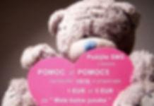 mishka-teddy-medvezhonok (2).jpg