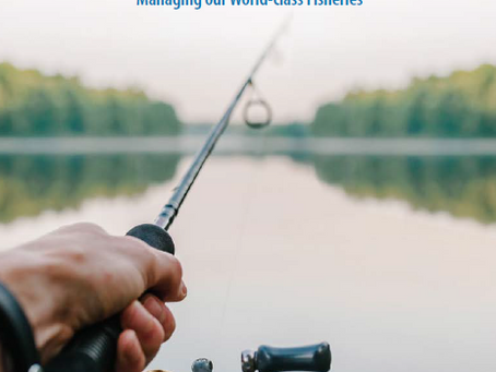 MANITOBA LAUNCHES ONLINE ENGAGEMENT SEEKING INPUT ON NEW RECREATIONAL ANGLING STRATEGY