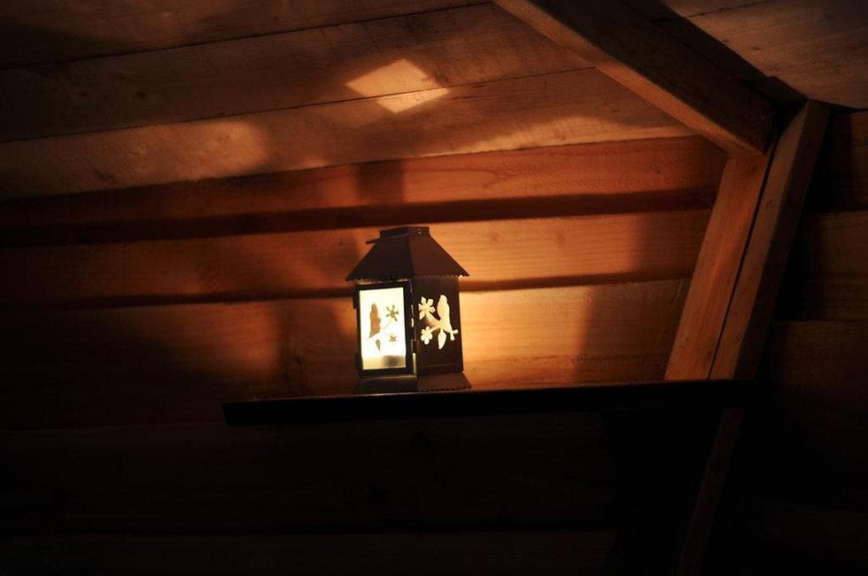 cabane-perle-nuit-arbres-L-gnmKtp.jpeg
