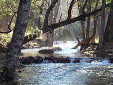 Bailey Creek Lodge
