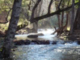 Bailey Creek Lodge - Couples Destination