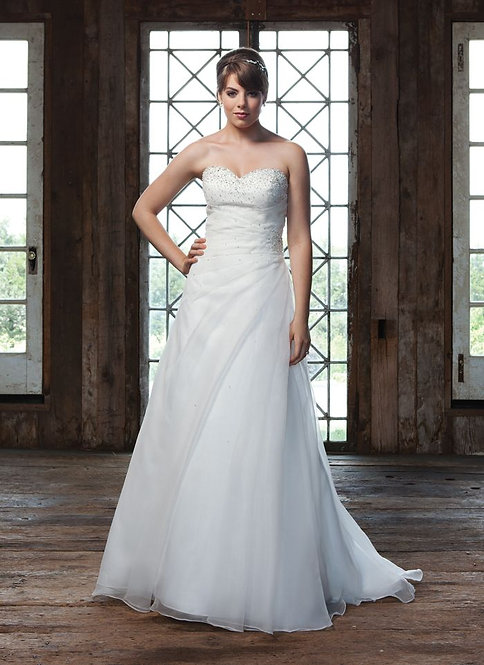 Sincerity Strapless Plus Size Gown