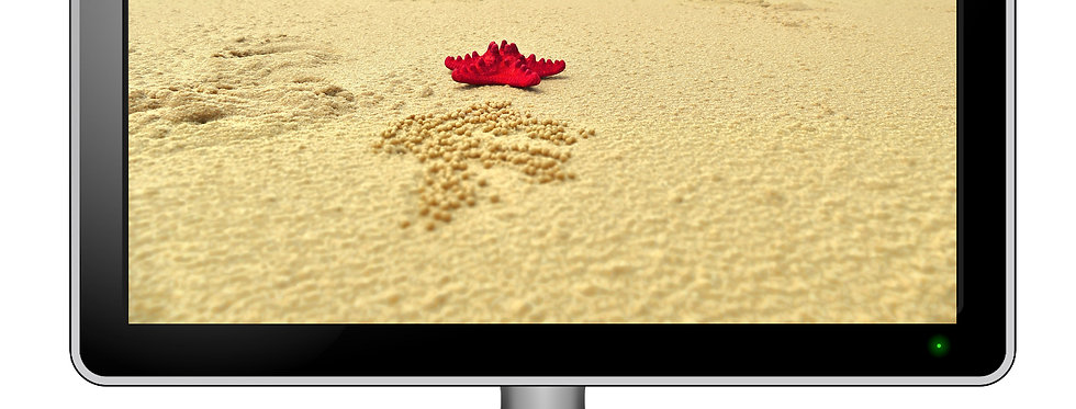 Red Starfish On Beach - Digital Photo Wallpaper Desktop Screensaver