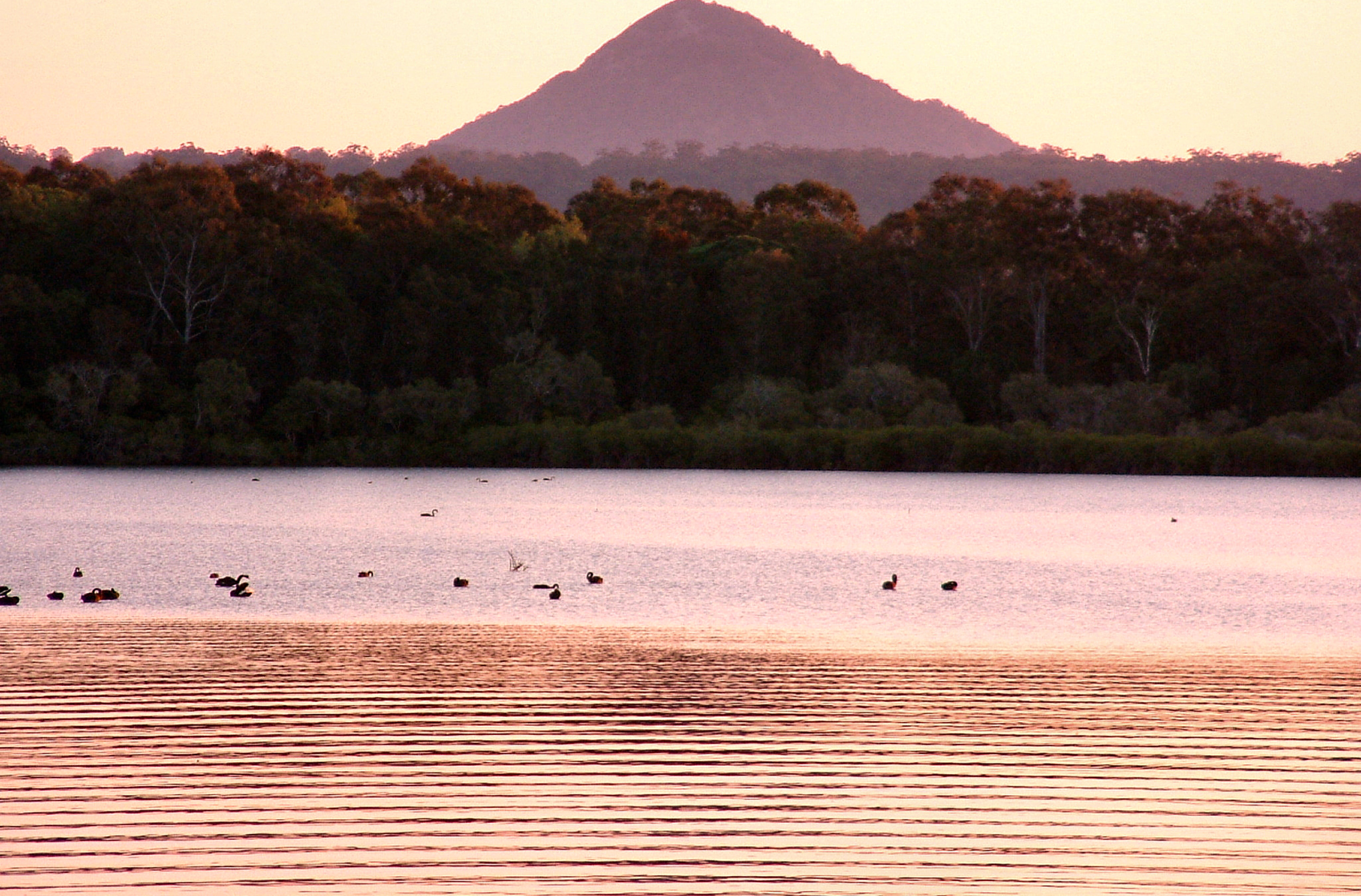 Mount Cooroy Sunset Pictures