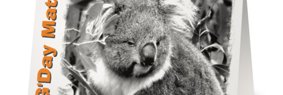 Australian Koala Greeting Card, Aussie Birthday Cards, Australian Cards