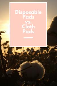 cloth pads, conventional disposable pads, disposable sanitary napkins, disposable sanitary pads, panty prop, pantyprop, period panties, period undies, period underwear