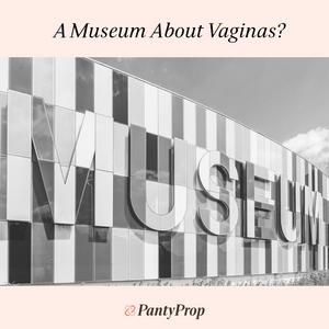 vagina museum, period panties, pantyprop, panty prop