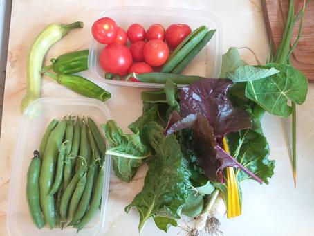 Vegetables!