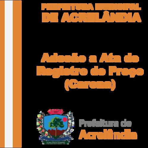 Adesão/Carona Nº 007/2020 (SRP 04/2020) -  Implantação e manutenção do e-SUS