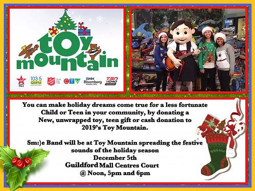 Toy Mountain 2019 1.JPG
