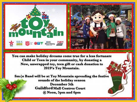 Toy Mountain 2019 2.JPG