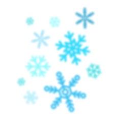 snow flake 2.png