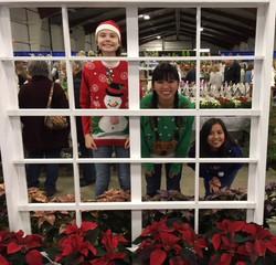 2017 West Coast Christmas Market (22)_edited