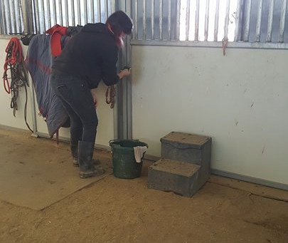 Stall Cleaning