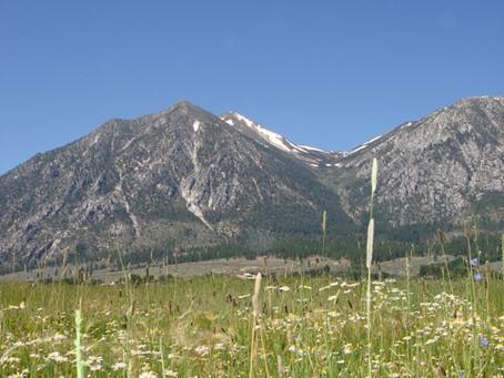 Hay Fields and Job's Peak