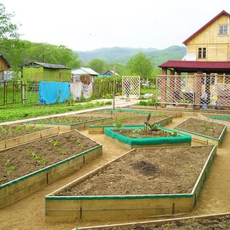 декоративный огород.jpg