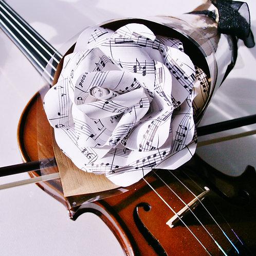 Musical Score Paper Rose