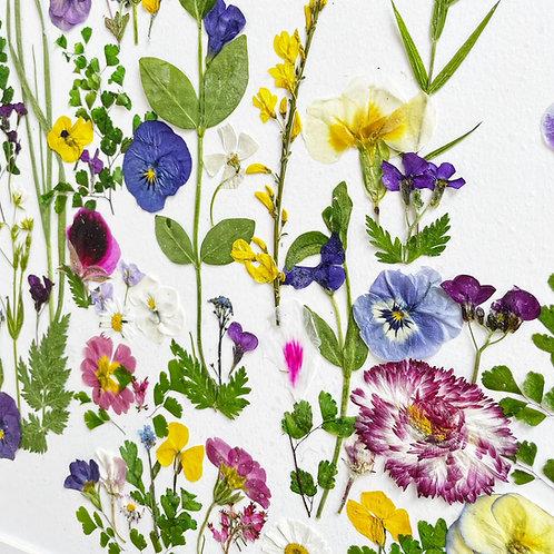 Fresh Flower Framed Art