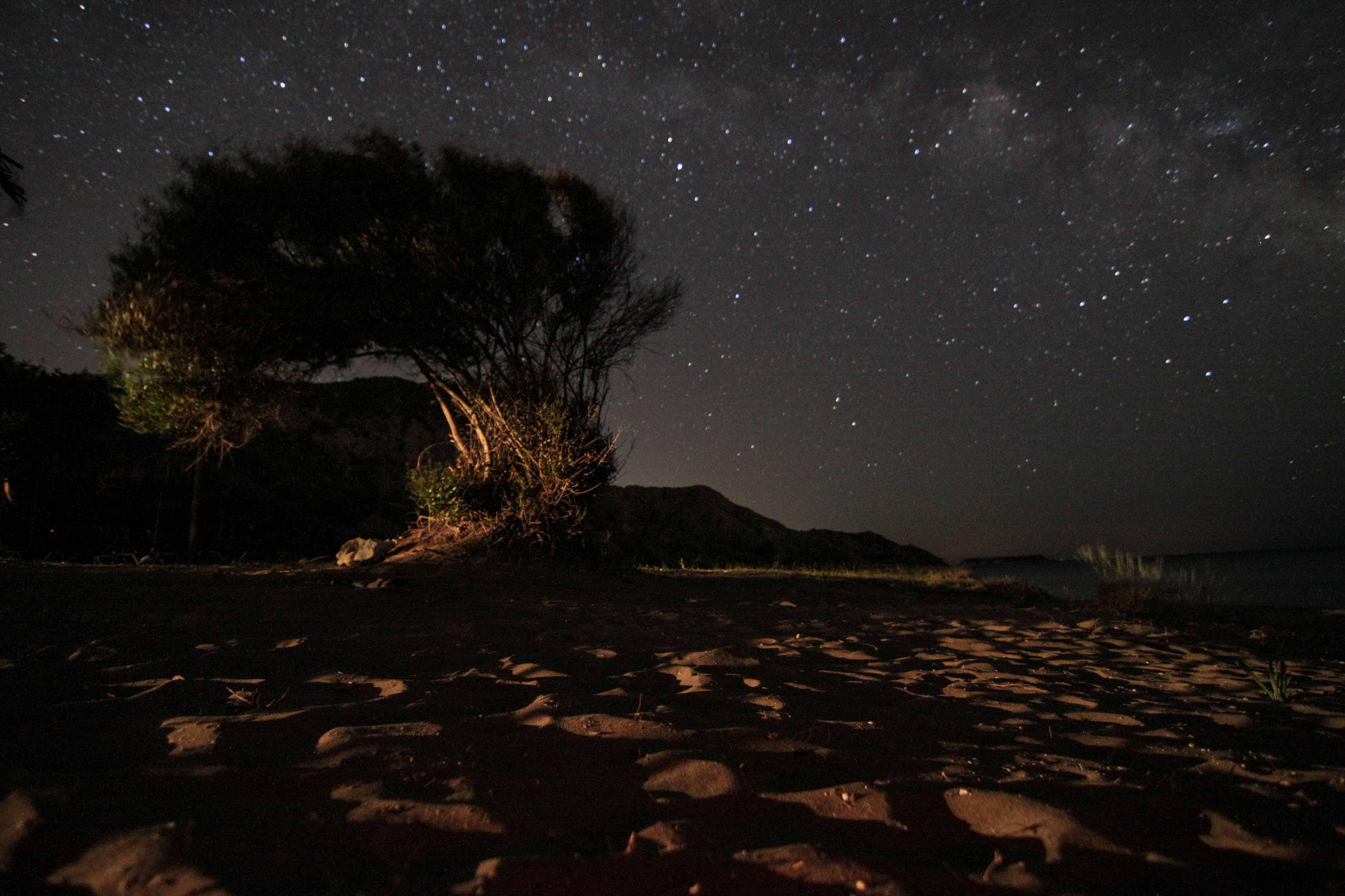DAFNI BEACH BY NIGHT