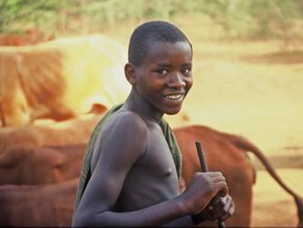 AFRIKAS VERWUNDETES HERZ