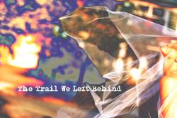 IMG_1614the trail we left behind talshibi