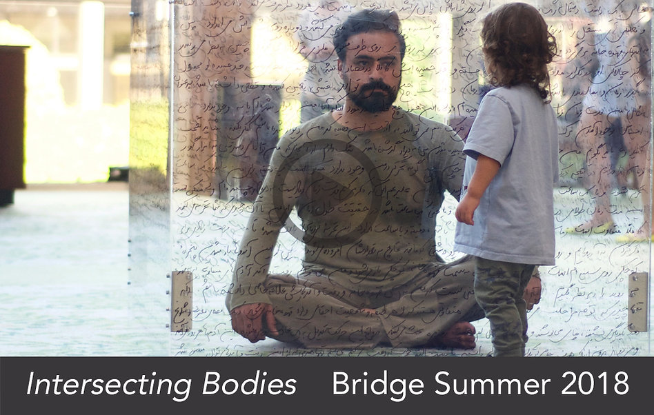 Intersecting Bodies_website video link i