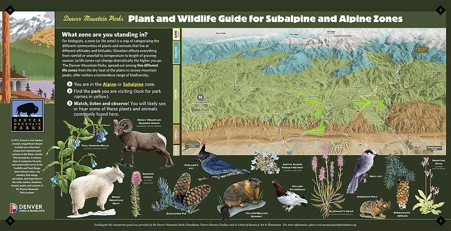 Sign #20 Flora and Fauna-SUBALPINE ALPIN