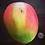 Thumbnail: Harvest Moon