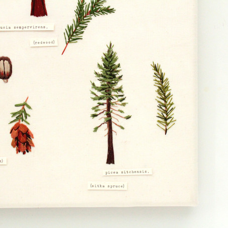 Stitching Evergreens