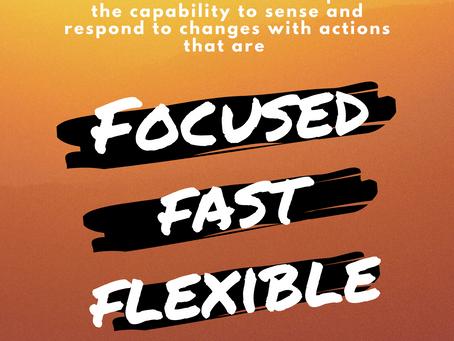 Leadership Agility Program