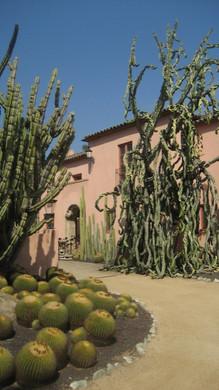 Mansion at Lotusland