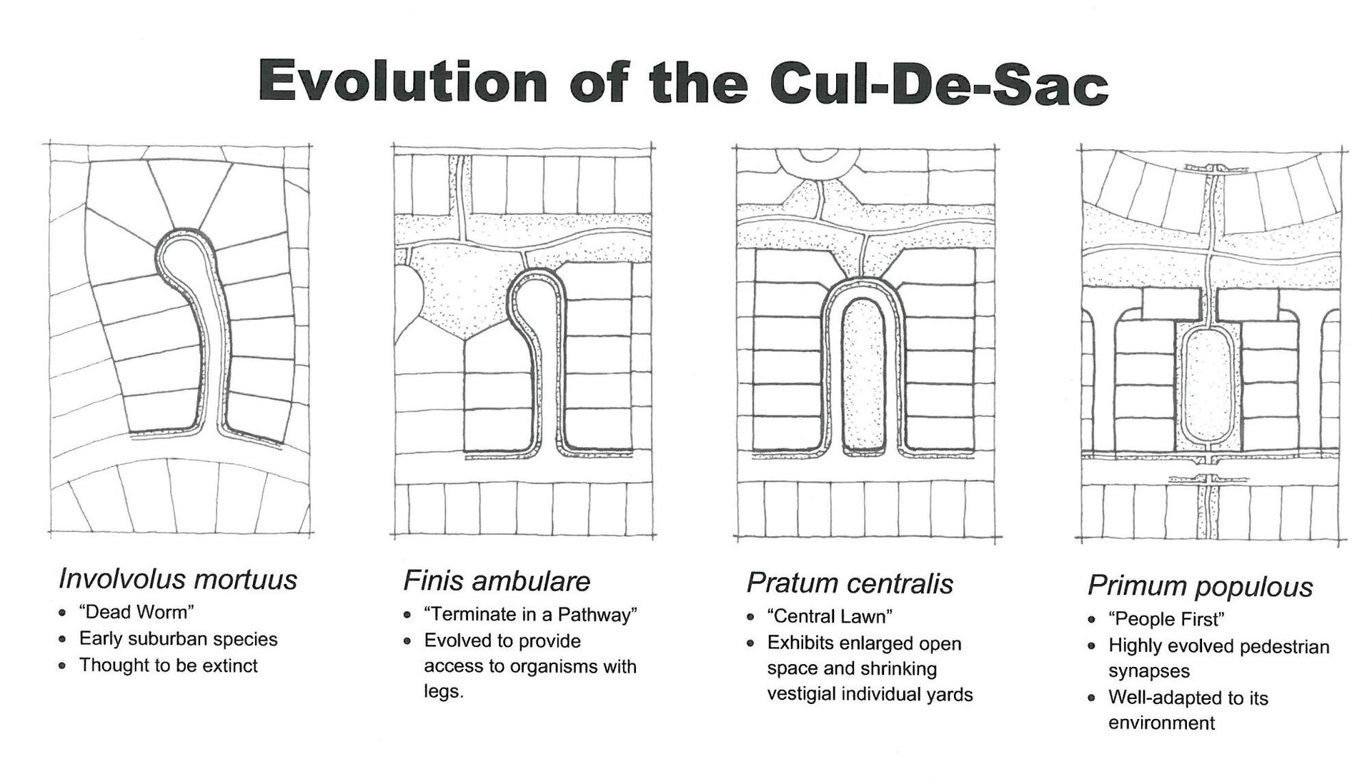 Evolution of the Cul-de-sac