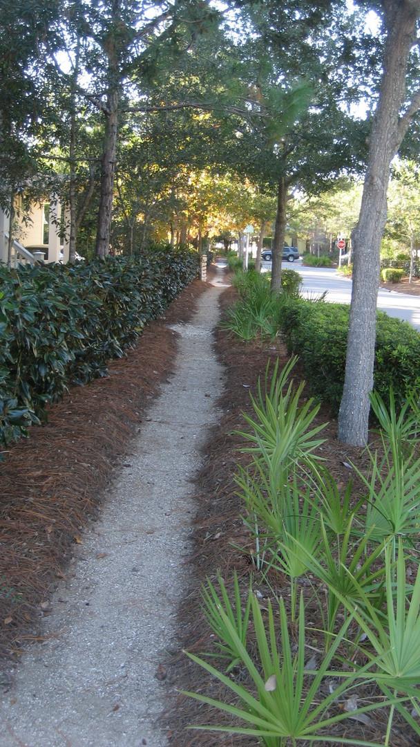 Pedestrian Pathways