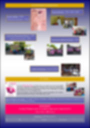 newsletter_N°1-page-002.jpg