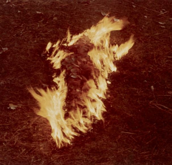 pioneering female artists: ana mendieta.