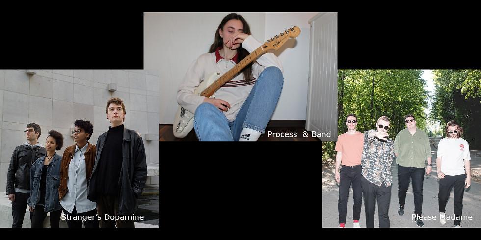 Please Madame  / Stranger's Dopamine / Process  & Band