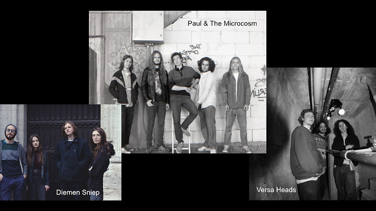 Paul & The Microcosm / Diemen Sniep /  Versa Heads
