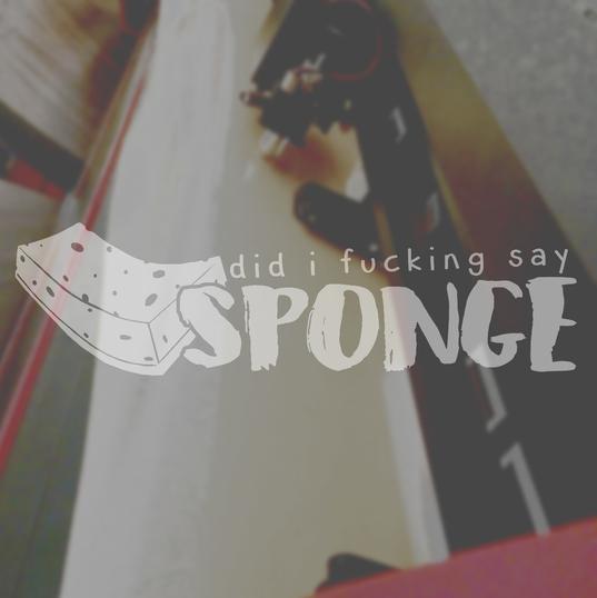 PRODUCT_sponge.png
