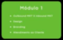 Módulo-1.png