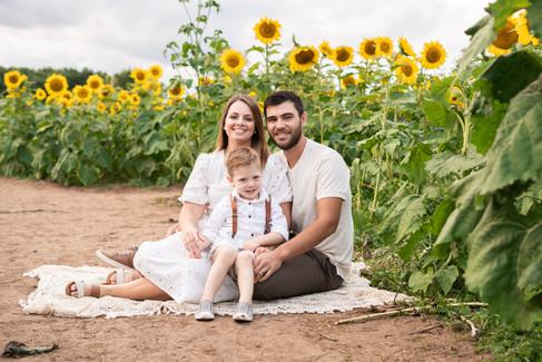 Angela-Dabu-Sunflower-Originals-44.jpg