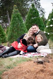tree-farm-low-Liz-4.jpg