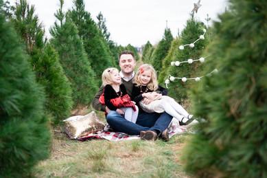tree-farm-low-Liz-31.jpg