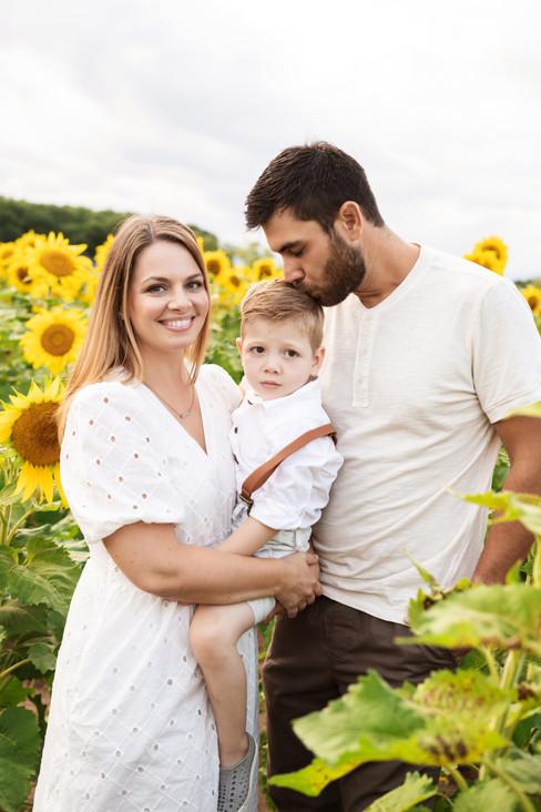 Angela-Dabu-Sunflower-high-8.jpg