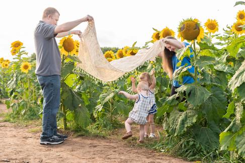 Jaime-Middaugh-Sunflower-Originals-9.jpg