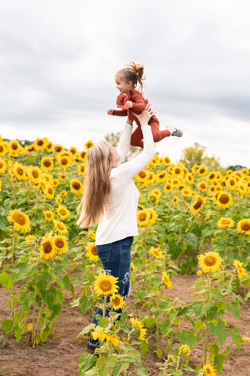 Reina-Sunflower-Originals-16.jpg