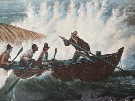 Vaccine hesitancy and the white whale