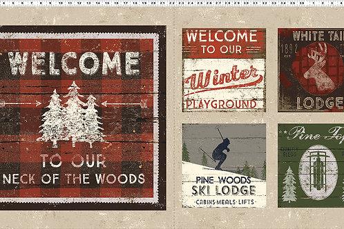 Winter Playground Panel
